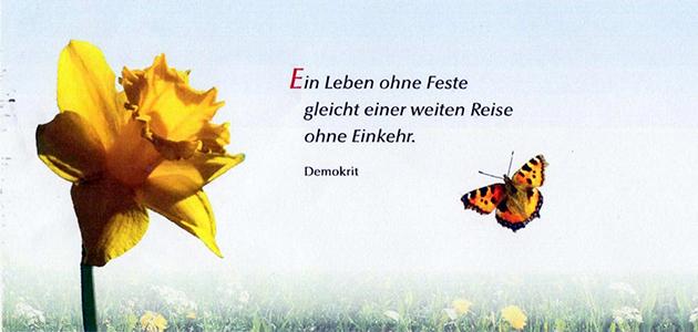 FF_Schmetterling
